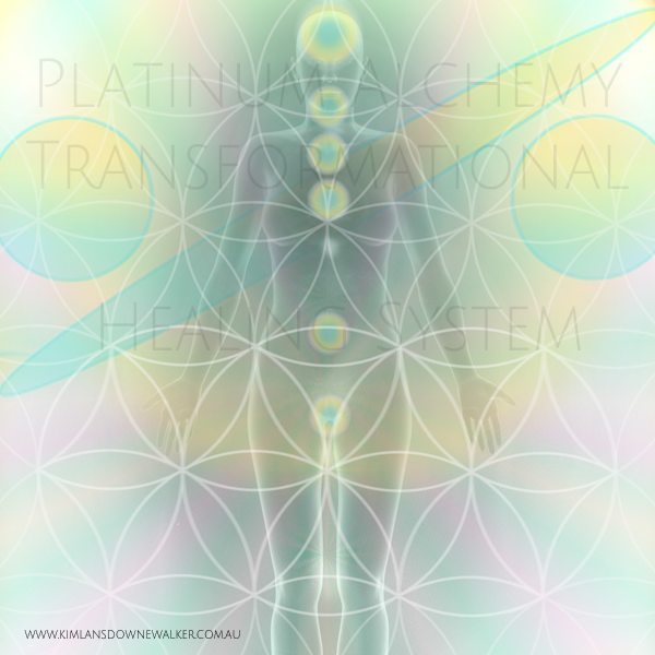Transition Platinum Alchemy Ascension Healing Kit