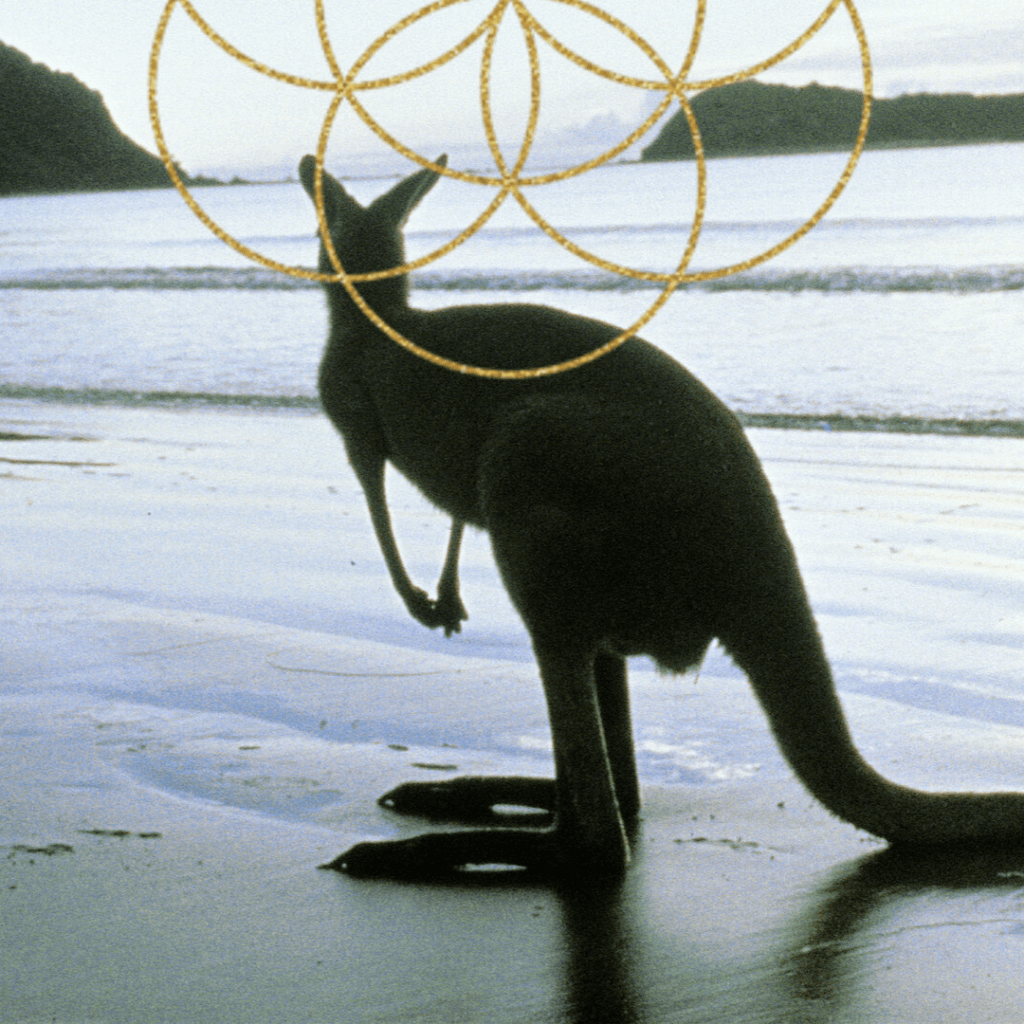 BALANCE-EVIL KANGAROO JOURNEY